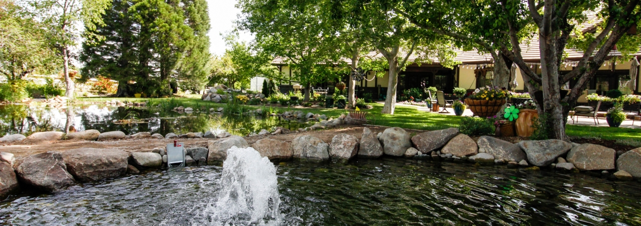 How to Choose Water Features for Your Landscape